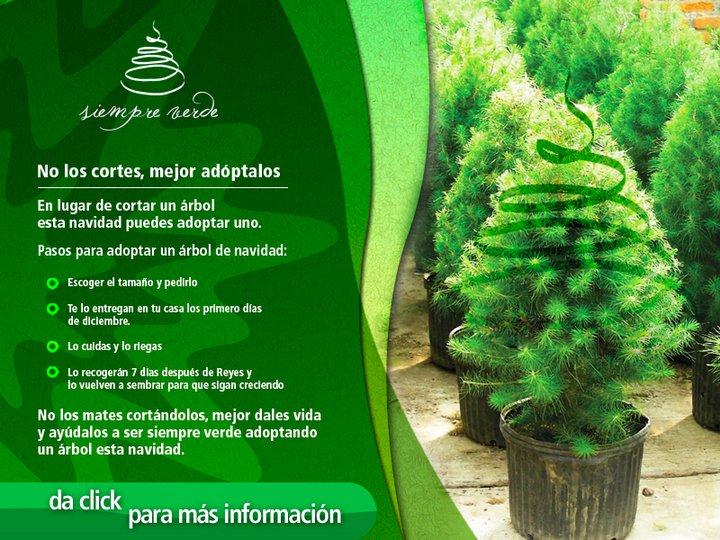 Navidad Ecológica Adopta Un árbol Mundo Feliz