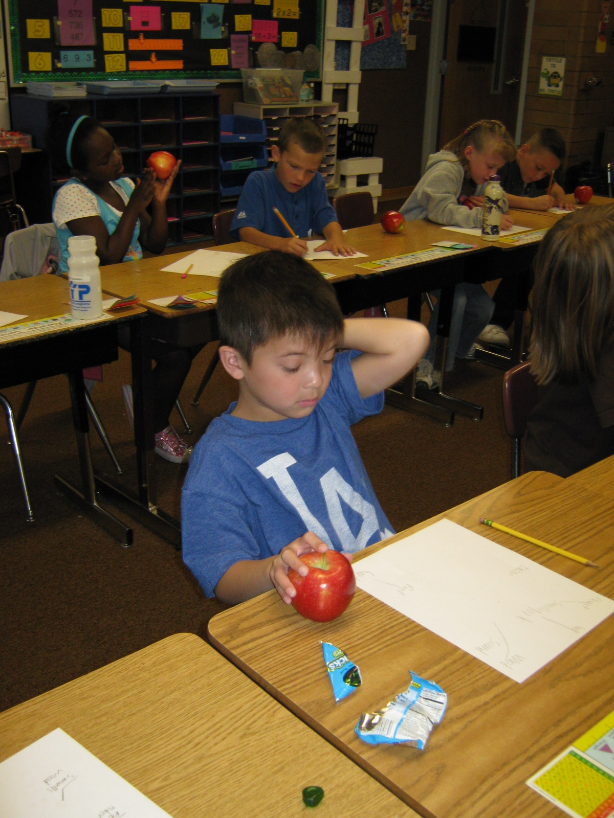 Mrs Warnick S Classroom 5 Senses