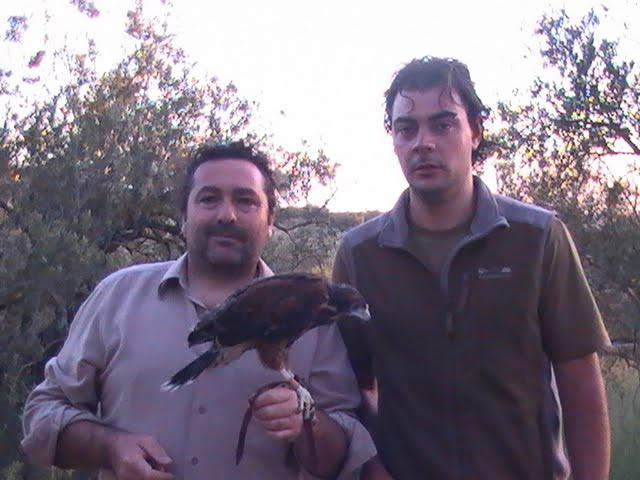 Tana mi amigo de Canarias el día que vino para recoger su pollo macho de harris con 28 días de vida