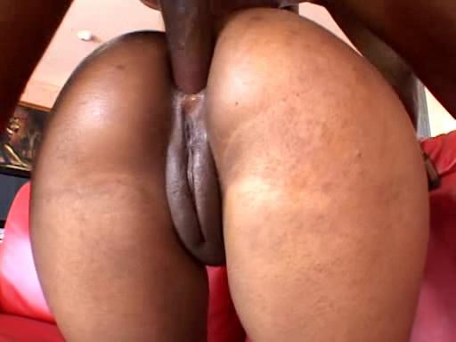 Black Booty Worship 109
