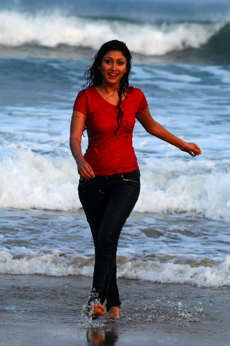 wet jeans manjari phadnis actress indian bollywood tshirt spicy shirt hindi telugu tamil pant fadnis actresses celebrities warming destroyed global