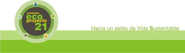Eco proyecto 21