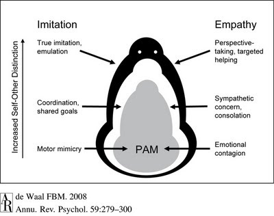 The Neurocritic: Impaired Cognitive Empathy in Bipolar Disorder and