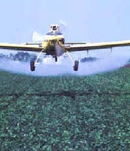 Los expertos alertan sobre el peligro que supone el uso ilegal de veneno para la conservación del medioambiente