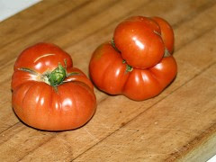 Frutas Hortalizas