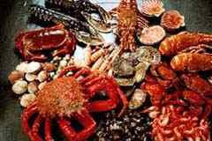 MARISCOS claves para consumir un marisco SEGURO