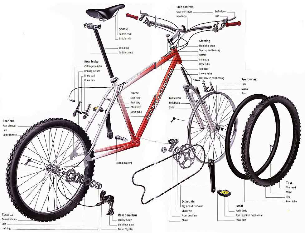 Componentes Partes De Una Bicicleta En Ingles Bicycle