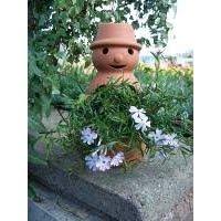 Flowerpot Man Garden Ornament  sc 1 st  Madhouse Family Reviews & Madhouse Family Reviews: Flowerpot Man Garden Ornament