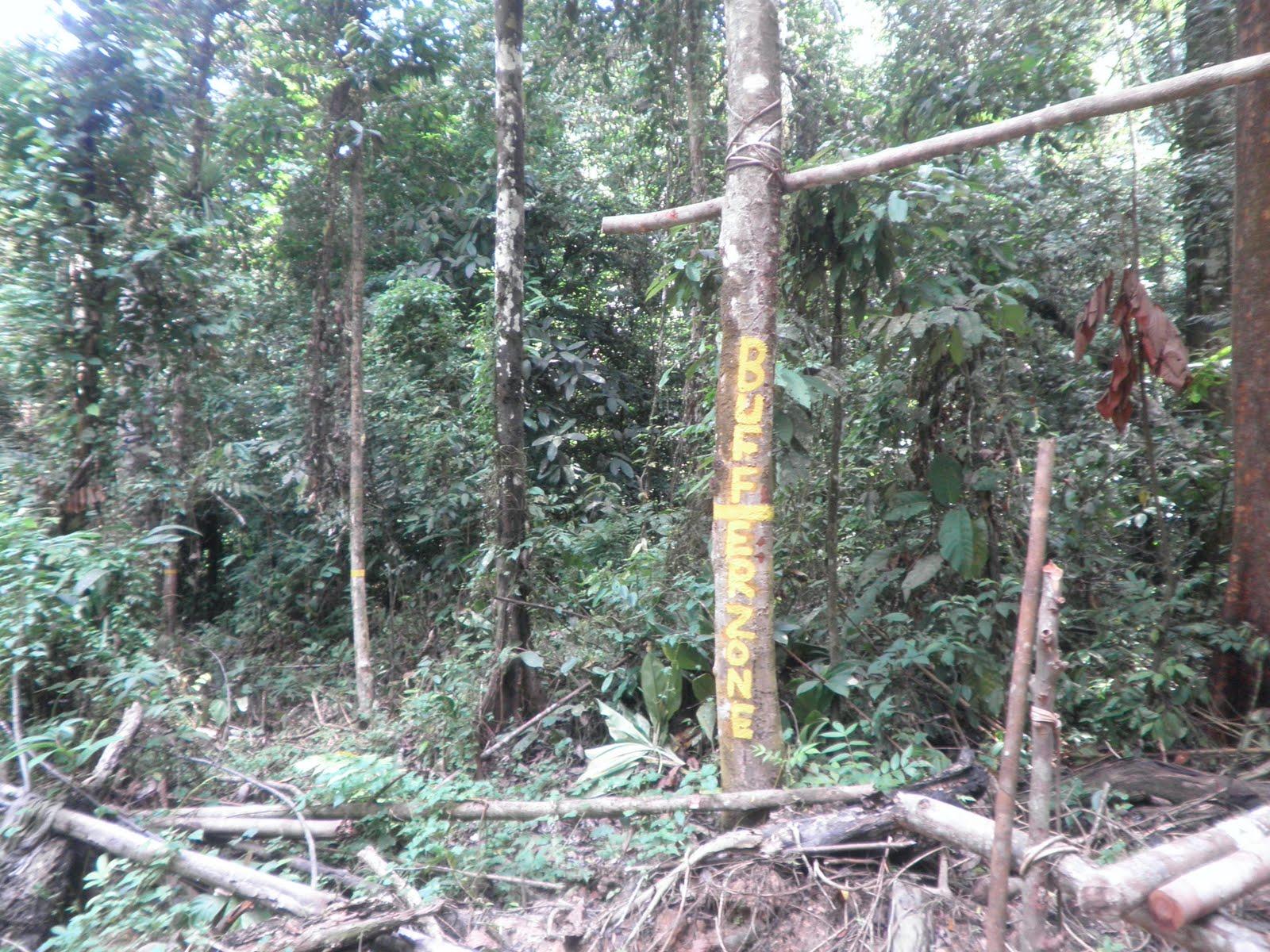 N9 TAHAN GEMPARPenerokaan hutan di Ulu Tembeling