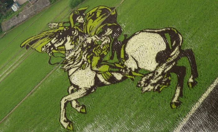 Amazing paddy field Painting: 13