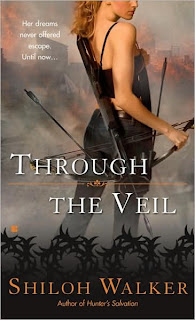 Book Watch: Through the Veil by Shiloh Walker