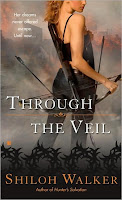 Review: Through the Veil by Shiloh Walker