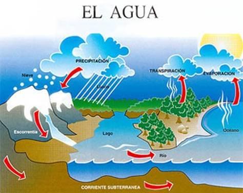 d5624b48545 el agua como sabemos es uno de los elementos mas importantes del mundo  tiene un ciclo que empieza por los lagos