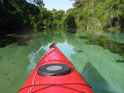 All Things Kayaking Greater Tampa Bay Area Dunedin