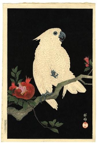 Kiwi S Angels Japanese Parrot Art