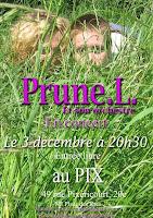 MUSIC: Prune.L., une jeune artiste à découvrir/a young artist to discover 1 image