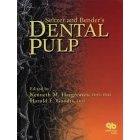 11 Download Seltzer and Bender's Dental Pulp PDF
