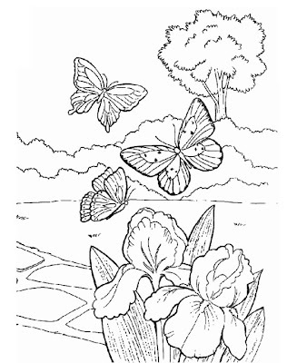 Desenhos Para Colorir Da Natureza