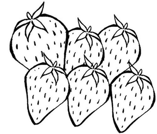 Desenho De Morango Para Colorir. Desenho De Fruta Morango