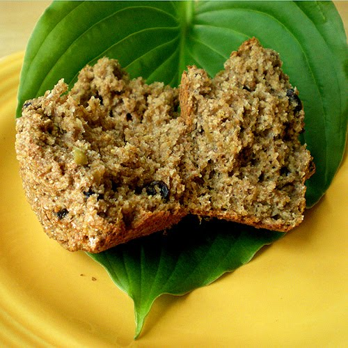Low Fat High Fiber Muffin 66
