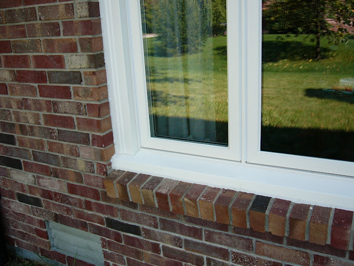 Terri Bee Window