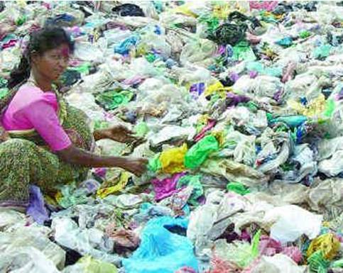 Important call: plastics kill!