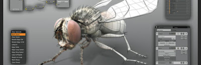 Designing a Fly - Blender Video Tutorial