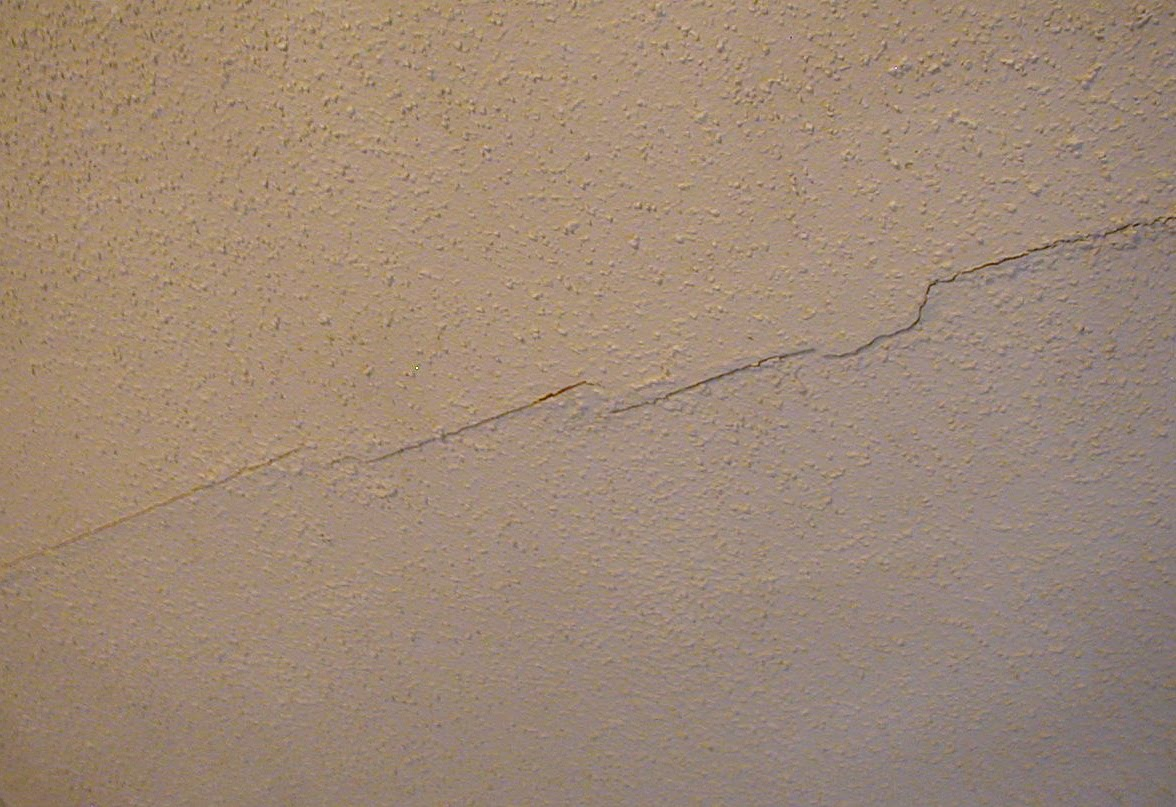 Daily bits of life: What to do about ceiling damage