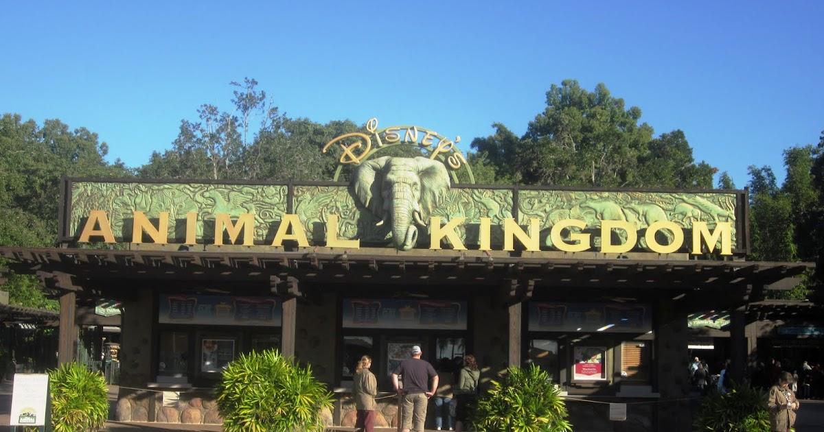 Indulge Inspire Imbibe: Disney's Animal Kingdom