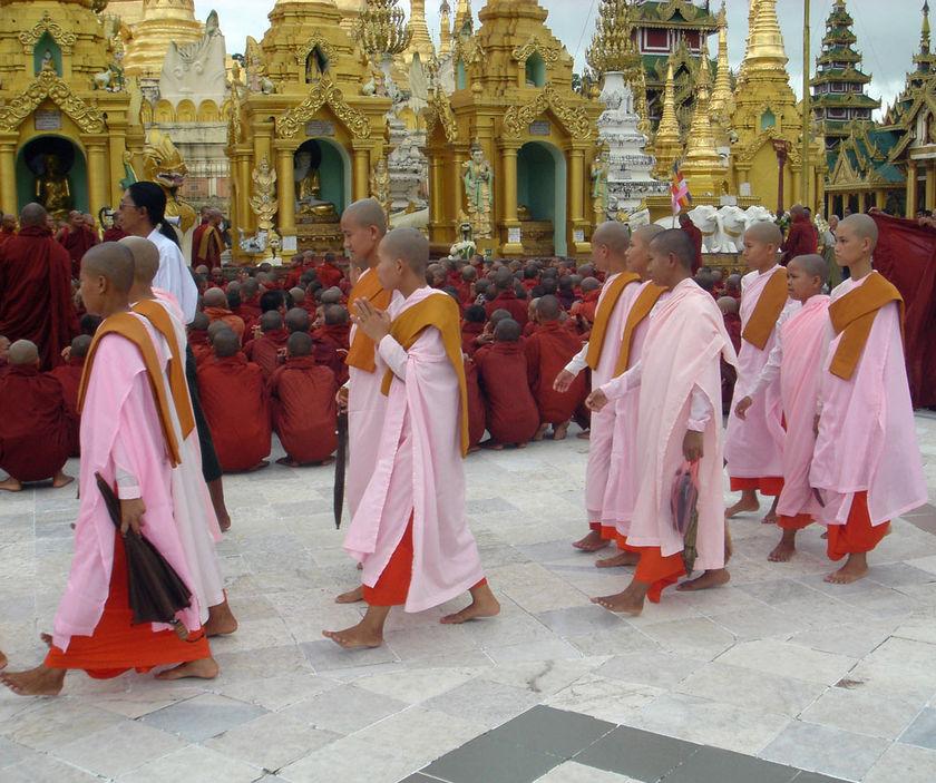 Wisdom Quarterly: American Buddhist Journal: November 2009