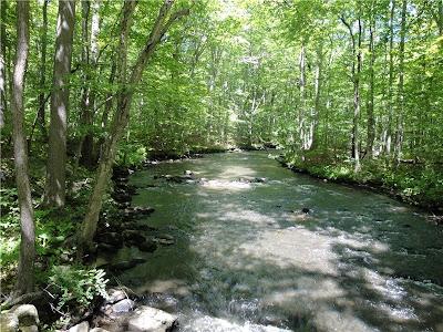 Gone Hikin Black River County Park Morris County Nj