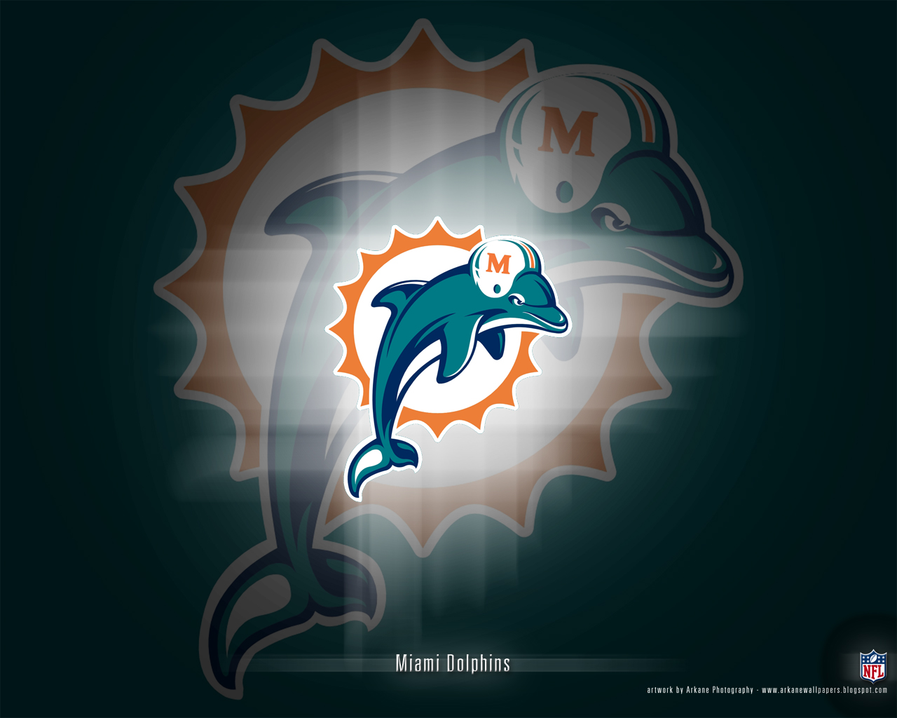 miami dolphins - photo #30