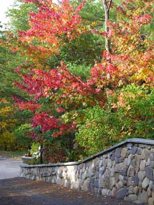 fall foliage at wall