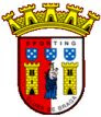 Braga logo