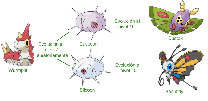 The gallery for --> Silcoon Evolution Chart