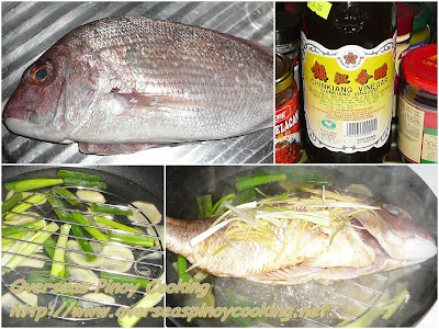 Steamed Fish, Steamed Maya Maya - Cooking Procedure