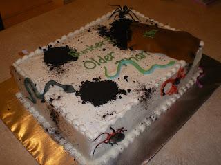 Skinny Cakery Older Than Dirt Cake