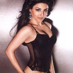 Bikini Photo Shoot Of Bollywood Babes