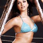 Most Searched Celebrity   Deepika Padukone