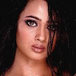 Shweta Tiwari Hot Sexy Pics