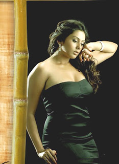 Sexy Namitha Hot Pics & Photos