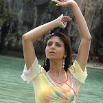 Ekta Khosla Hot Pictures