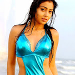 Shriya Saran Wet Bathing Pictures | Shriya Hot