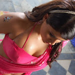 Telugu Girl Farzana Hot In Saree