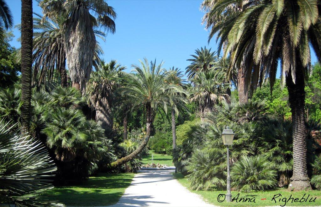Righeblu un parco da scoprire l 39 orto botanico di roma for O giardino di pulcinella roma