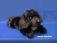large Newfoundland plush stuffed animal dog