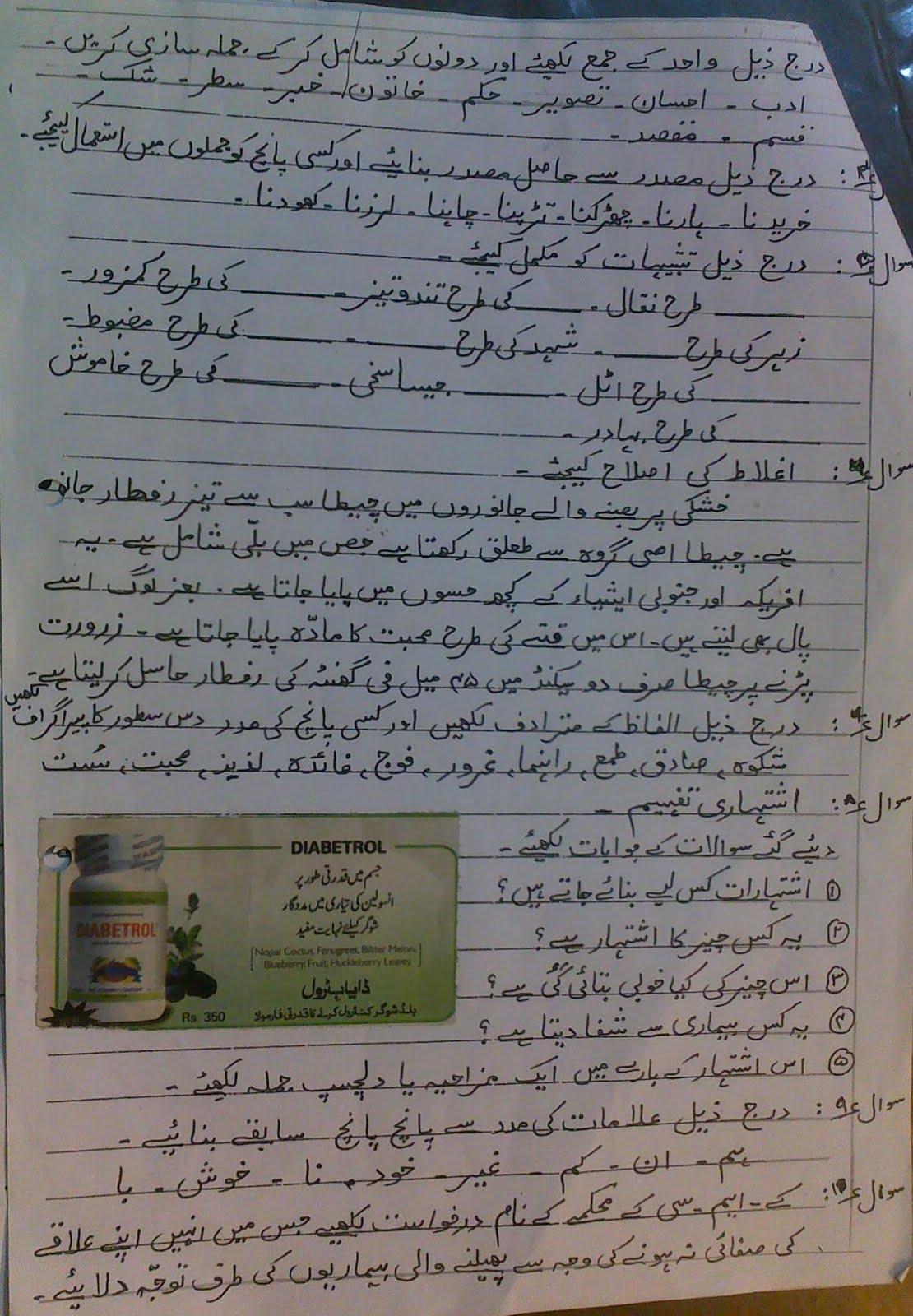 The City School Paf Chapter Jr C Section Urdu Revision Worksheets