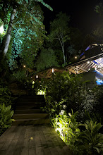 Jungle-Luxe Dining