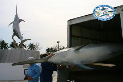 welcome to king sailfish mounts fish mounts release mount fish