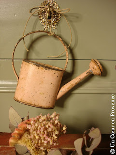 Small old watering can